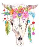 Cráneo del toro de la acuarela con las flores, las gotas y las plumas Imágenes de archivo libres de regalías