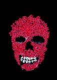 Cráneo del vector Imagen de archivo