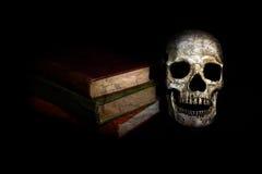 Cráneo del vintage con las novelas Imagen de archivo