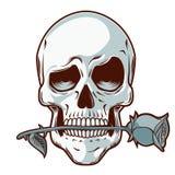 Cráneo dibujado mano con una Rose ilustración del vector