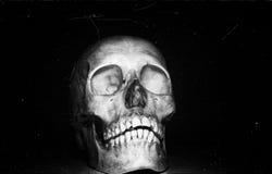Cráneo en backround negro imagen de archivo libre de regalías
