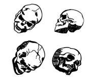 Cráneo en diverso dibujo de la mano de las posiciones Fotos de archivo