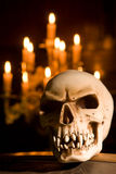 Cráneo en el ataúd Foto de archivo libre de regalías