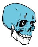 Cráneo en el fondo blanco Imagen de archivo libre de regalías