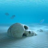Cráneo en fondo oceánico arenoso con los pequeños pescados que limpian algunos huesos Imagen de archivo