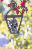 Cráneo en jaula con las flores rojas Fotos de archivo libres de regalías
