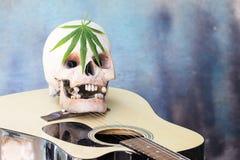 Cráneo en la guitarra y la hoja verde del cáñamo Imagen de archivo libre de regalías