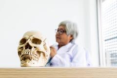 Cráneo en la tabla foto de archivo libre de regalías