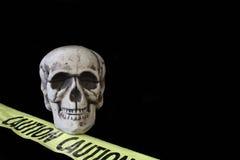 Cráneo en negro Imágenes de archivo libres de regalías