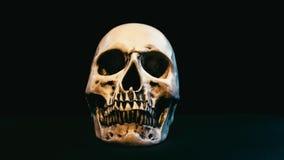 Cráneo en oscuridad almacen de video