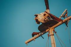 Cráneo en velero fotografía de archivo libre de regalías