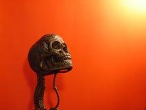 Cráneo falso Imagenes de archivo
