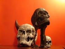 Cráneo falso Imagen de archivo libre de regalías