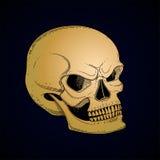 Cráneo gráfico con sonrisa temerosa Imagen de archivo