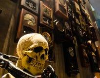 Cráneo Halloween en casa vieja Imagen de archivo libre de regalías