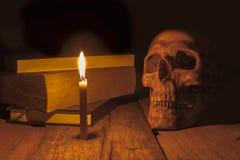 Cráneo humano en fondo oscuro Foto de archivo libre de regalías