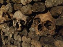 Cráneo humano rodeado por los huesos foto de archivo