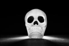 Cráneo iluminado Foto de archivo libre de regalías