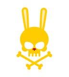 Cráneo lindo del conejo con los huesos Bueno, liebres del esqueleto de Honey Head Lo Imágenes de archivo libres de regalías