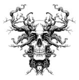 Cráneo mágico con las raíces libre illustration