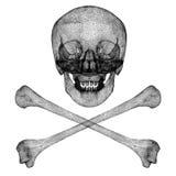 Cráneo negro del alambre Imagenes de archivo