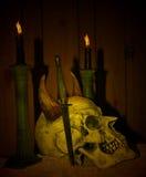 Cráneo oscuro Imagen de archivo libre de regalías