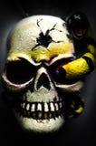 Cráneo temeroso para Halloween Imagen de archivo