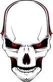 Cráneo. Vector Fotografía de archivo