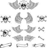 Cráneo y alas Foto de archivo