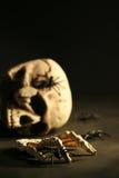 Cráneo y arañas asustadizos Fotos de archivo libres de regalías