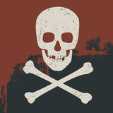 Cráneo y bandera pirata Fotografía de archivo