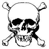 Cráneo y crossbones stock de ilustración