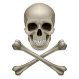 Cráneo y crossbones ilustración del vector
