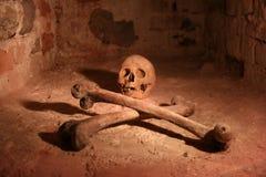 Cráneo y Crossbones Imágenes de archivo libres de regalías