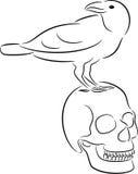 Cráneo y cuervo Imagenes de archivo