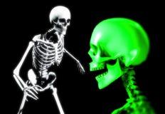 Cráneo y huesos 1 Imágenes de archivo libres de regalías