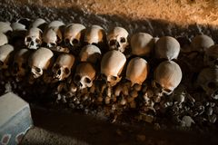 Cráneo y huesos fotos de archivo libres de regalías