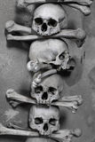 Cráneo y huesos Imagen de archivo