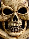 Cráneo y huesos Fotografía de archivo libre de regalías