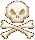 Cráneo y huesos Foto de archivo libre de regalías