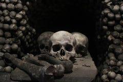 Cráneo y huesos Fotos de archivo