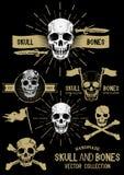Cráneo y huesos del pirata del vector fijados Fotografía de archivo libre de regalías