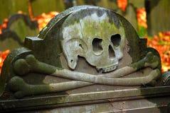 Cráneo y huesos en un sepulcro fotos de archivo
