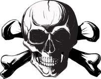 Cráneo y huesos humanos Imagen de archivo libre de regalías