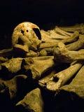 Cráneo y huesos largos en oscuridad fotografía de archivo