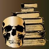 Cráneo y libros Imágenes de archivo libres de regalías
