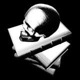 Cráneo y libros de la ilustración Fotografía de archivo