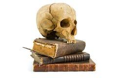 Cráneo y libros viejos Fotografía de archivo libre de regalías