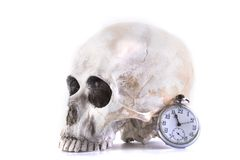 Cráneo y reloj humanos Imagen de archivo libre de regalías