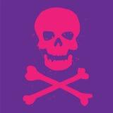 Cráneo y símbolo de la bandera pirata imágenes de archivo libres de regalías